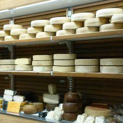 formaggi-vari